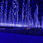 栃木県のグルメ&観光スポット